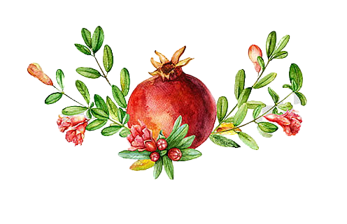 pomegranate-fruit-removebg-preview_0.png