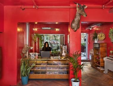 Dave Tel Aviv | affordable boutique hotel in Tel Aviv |Hotel
